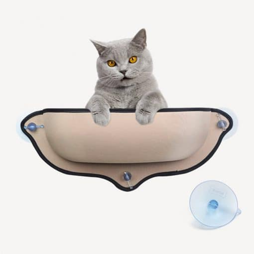 cat window seat with suction cups