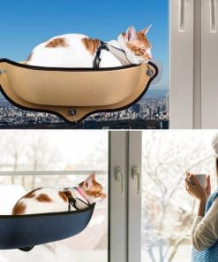 window hammock cat lounge
