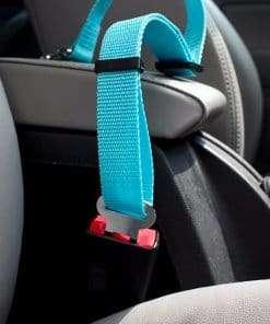 adjustable cat seat belt tether detail